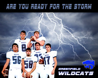 2016 Greenfield Wildcats